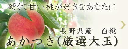 硬くて甘い桃が好きなあなたに 長野県産白桃 あかつき