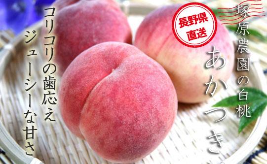 長野県産 塚原農園の白桃「あかつき」