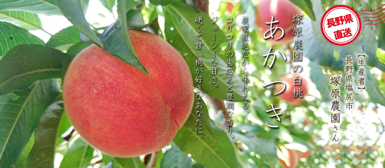 農家直送だから味わえる、コリコリの歯応えと豊潤な香り、ジューシーな甘さ。硬くて甘い桃が好きなあなたに。塚原農園の白桃「あかつき」