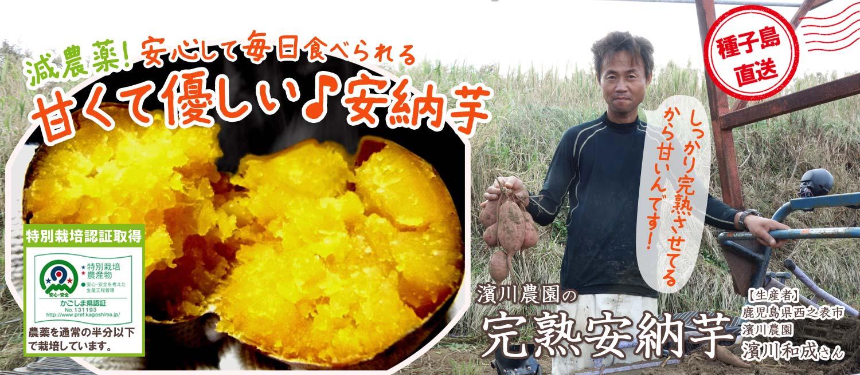 減農薬!安心して毎日食べられる、甘くて優しい濱川農園の完熟安納芋