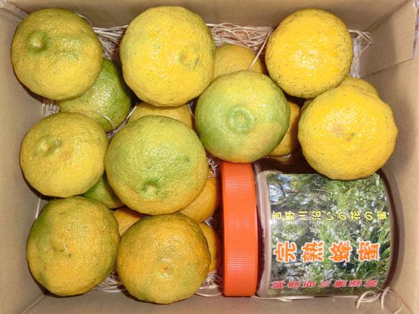 多田錦柚子と完熟蜂蜜のセット