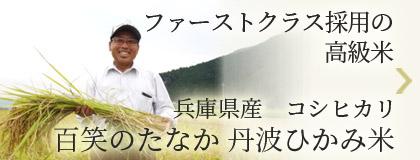 ファーストクラス採用の高級米 兵庫県産コシヒカリ 百笑のたなか 丹波ひかみ米
