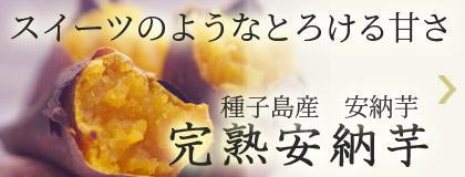 スイーツのようなとろける甘さ!種子島産安納芋 完熟安納芋