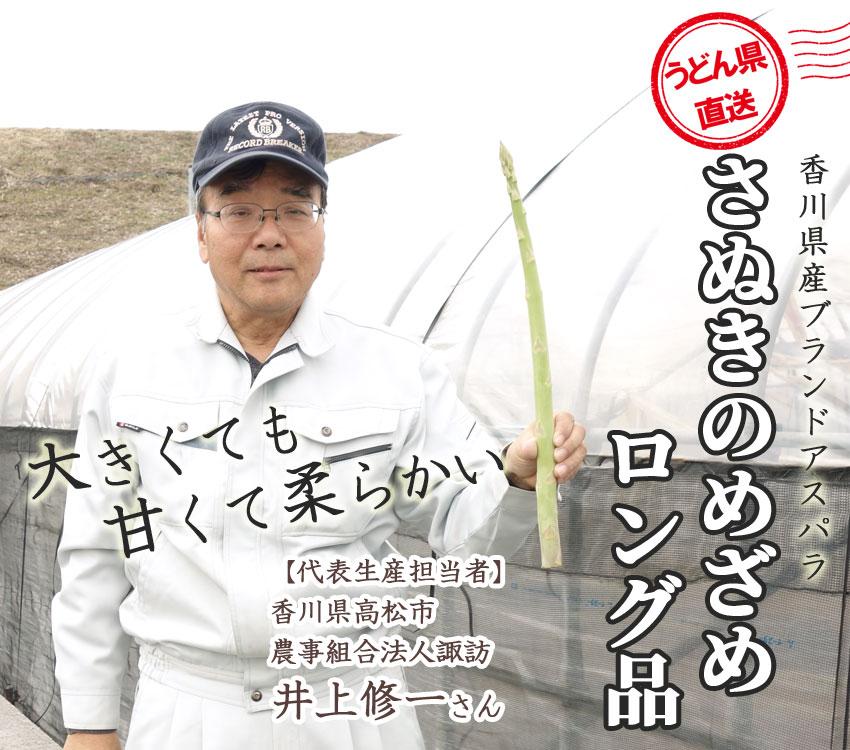 アスパラの常識を超えた、驚きの長さ。大きくても甘くて柔らかい!香川県産ブランドアスパラ「さぬきのめざめ」