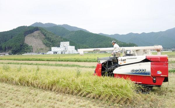 コンバインでお米を収穫中の写真