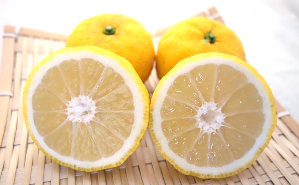 種無し柚子「多田錦」をカットした写真