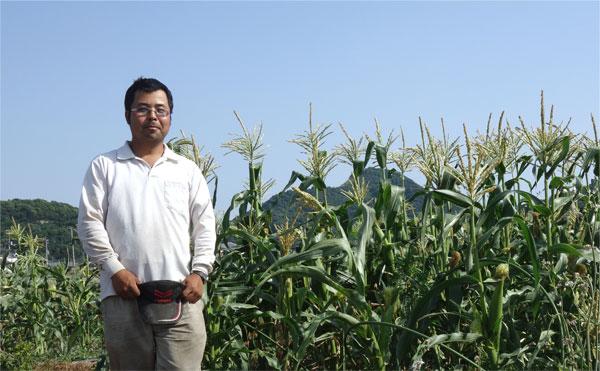 収穫前のとうもろこし畑と笑顔の髙木農園園主髙木さん