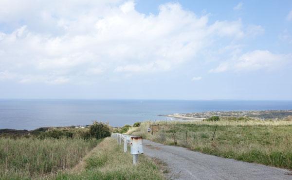 海が見渡せる濱川農園の畑