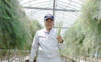 さぬきのめざめを作っている「農事組合法人諏訪」さんが朝日新聞に掲載されました