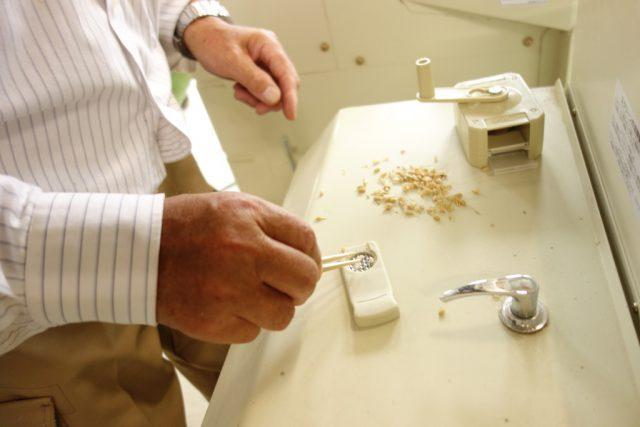 こだわり農家田中さんがお米の水分量を測定している様子