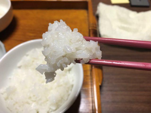 ツヤツヤと美味しそうな 「丹波ひかみ米コシヒカリ」