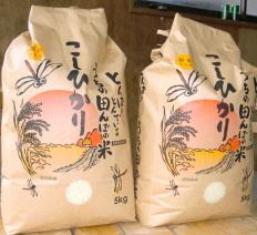 丹波ひかみ米の写真