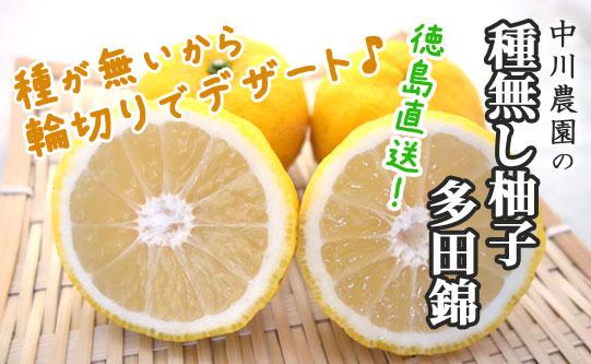 【徳島直送】種がない希少な柚子「多田錦」