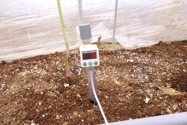 アスパラの土壌データ採取用センサー