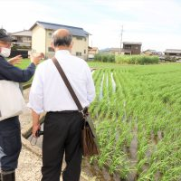 さぬきのめざめを作っている「農事組合法人諏訪」さんが農業誌で特集されました